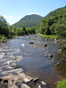A mountain stream in the Adirondacks